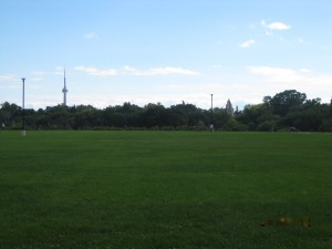 The view from an all time favourite run in a Toronto Park