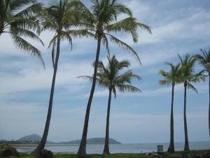 the Kahala view