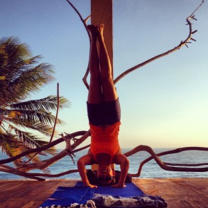 Challenging, strength, movement/flexibility, novel and attunement