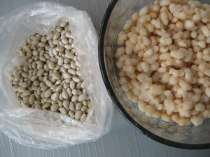 dry white beans before soaking and cooking then ready to eat after with just a little work
