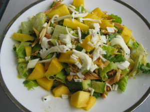 mixed green salad with slow cooked chicken, avocado, mango, cilantro and lime
